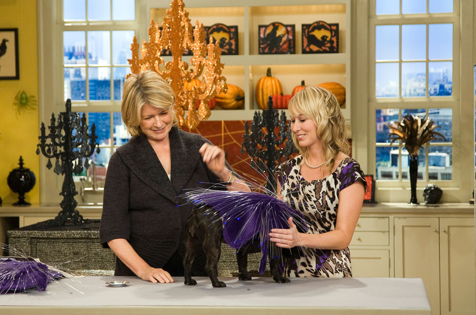 Fiber Optic Dog Costume for Martha Stewart Show